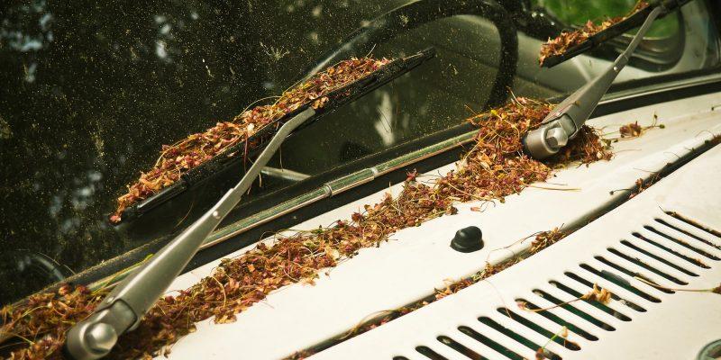 Comment bien nettoyer ses vitres de voiture?