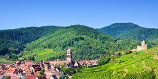 La route des vins d'Alsace