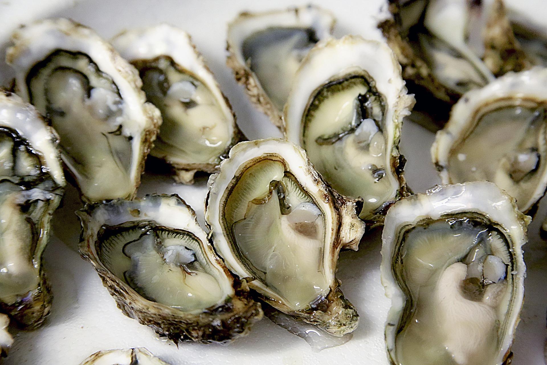 Comment bien choisir ses huîtres? 4