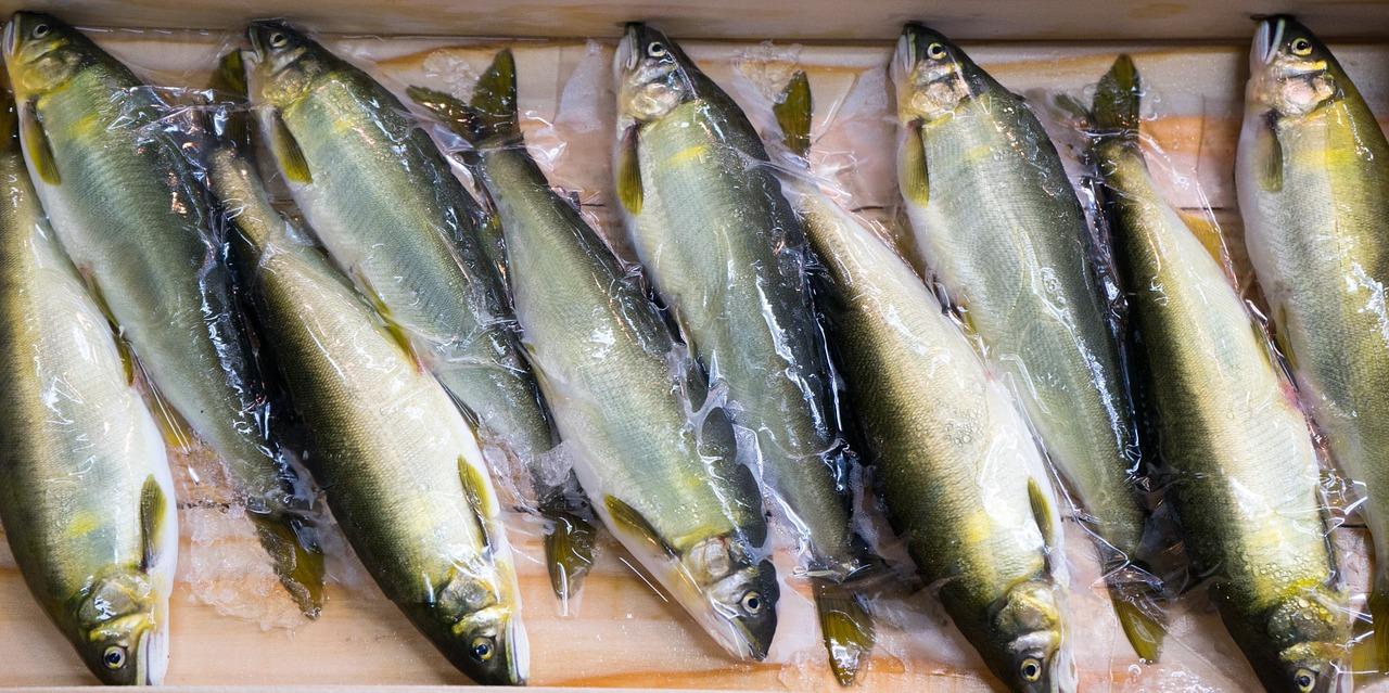 Que nous apporte le poisson ? 2