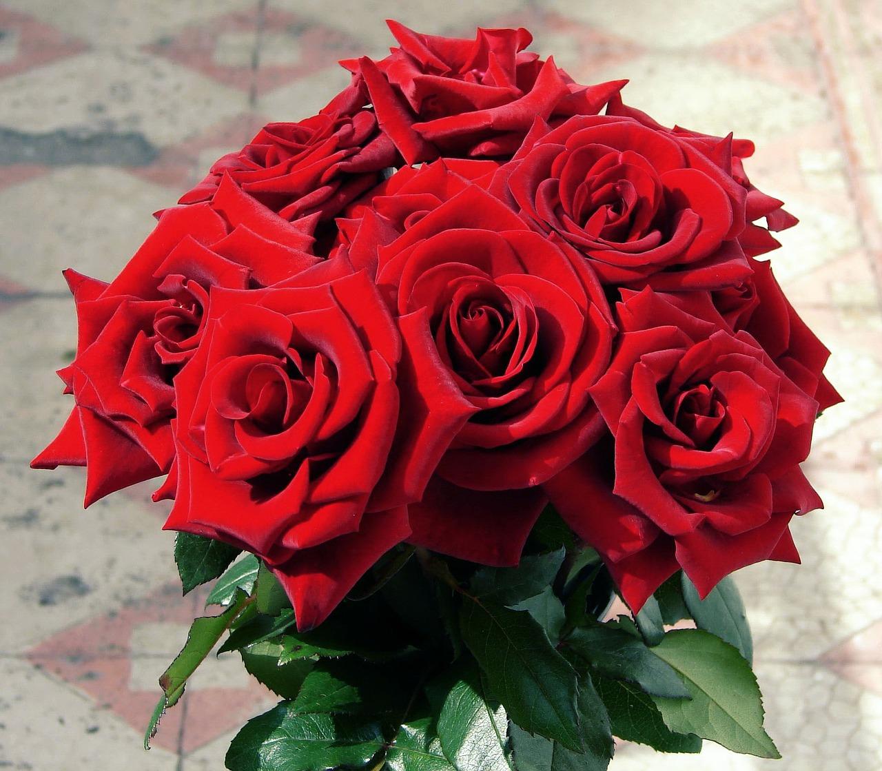 Comment composer votre bouquet de fleurs pour la Saint-Valentin ? 3