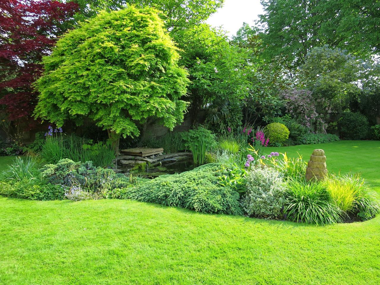 Le jardin à l'anglaise 1