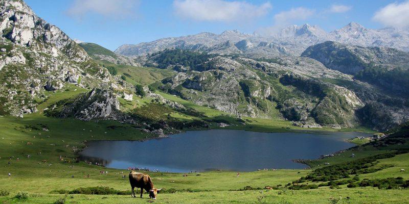 Les Pyrénées : destination d'été et d'hiver
