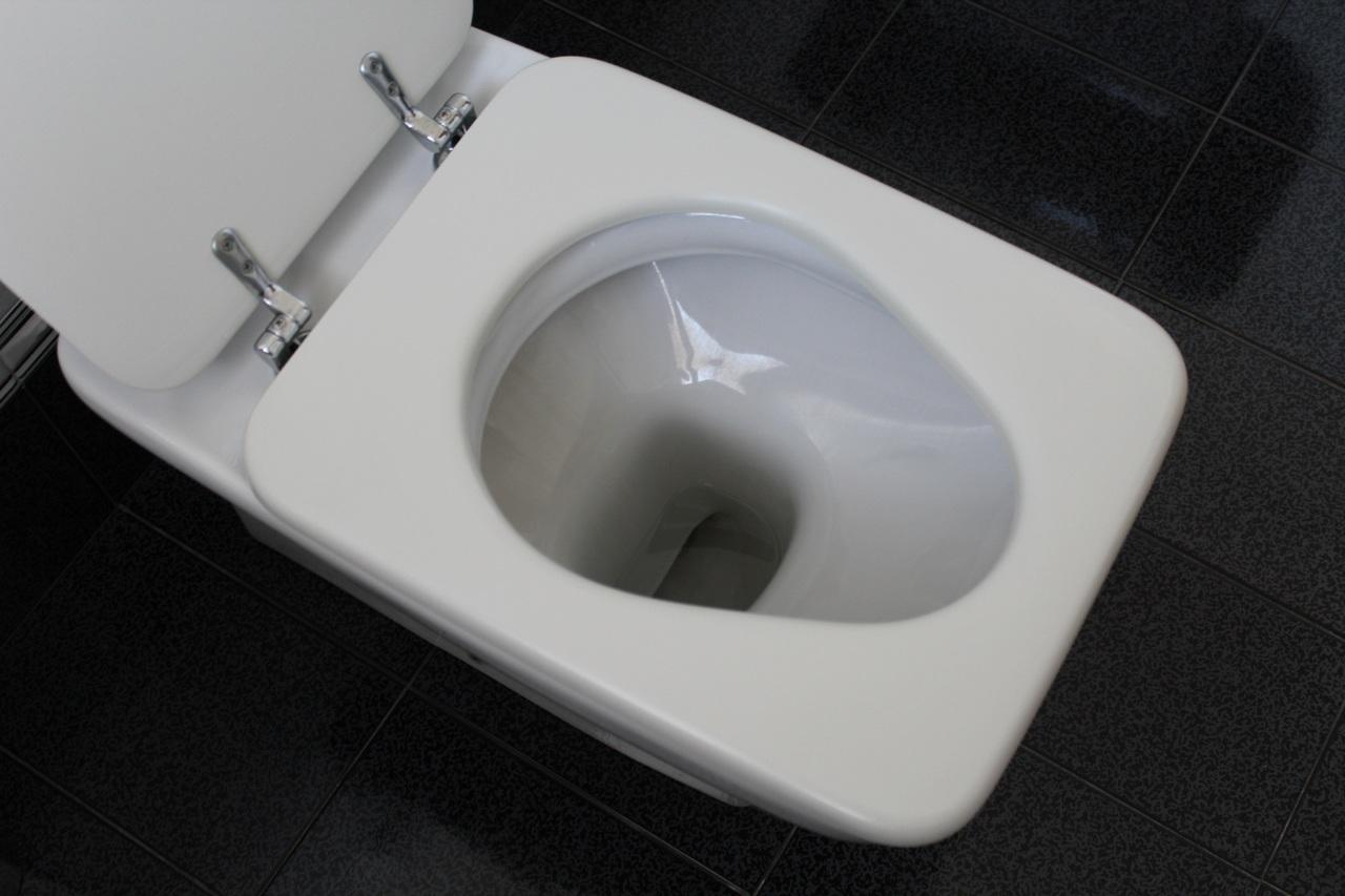 Comment choisir ses toilettes? 3