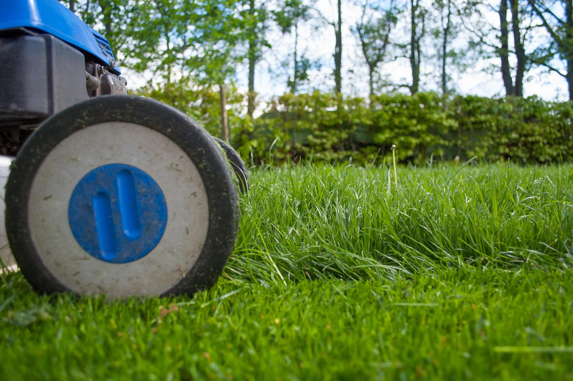 Pourquoi confier son jardin à un paysagiste professionnel ? 4