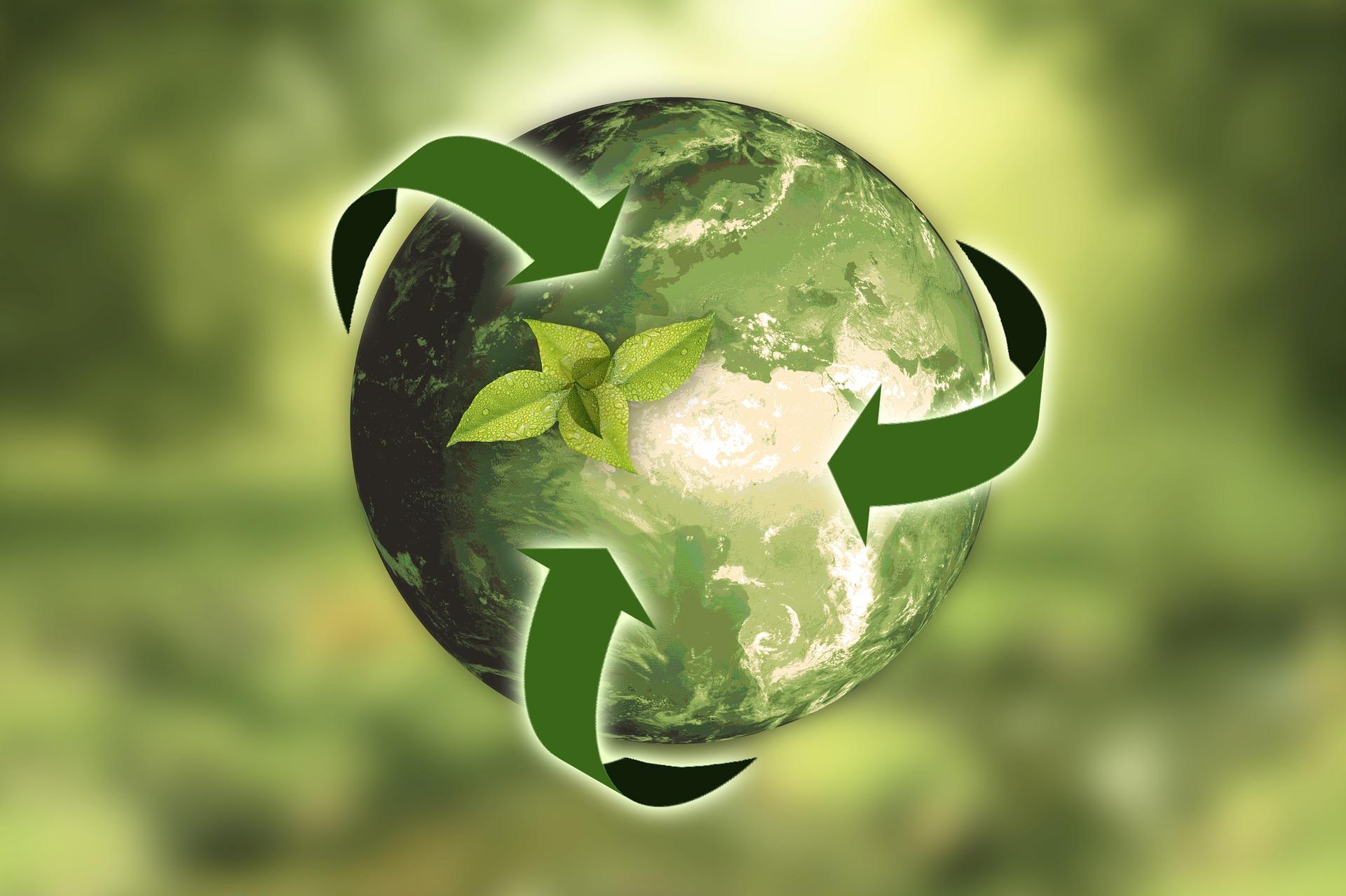 Nettoyer sa maison grâce aux produits écologiques 1