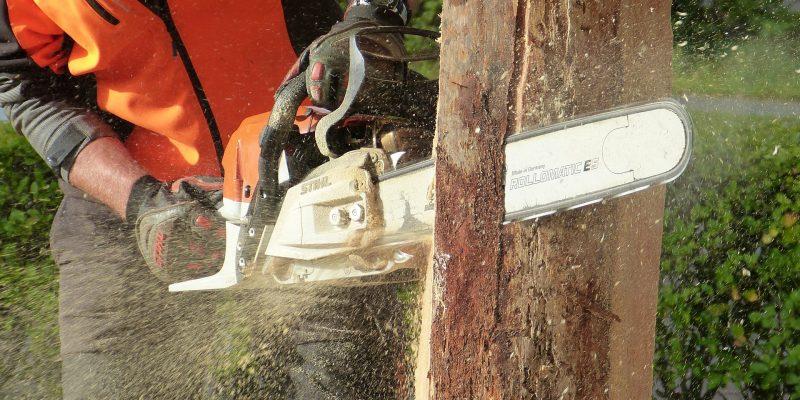 Comment choisir une tronçonneuse à bois ?